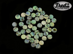 GREEN ABALONE 6mm (BULK PACK OF 50PCS)