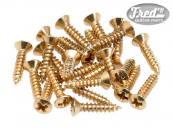 Pickguard/Control Plate Mounting Screws (24) (Gold)